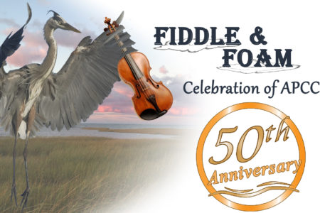 Fiddle & Foam – 3/23